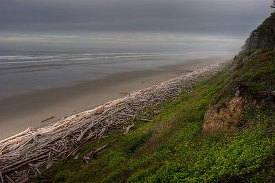 Washington Coastline, Olympic Peninsula