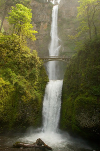 Multnomah Falls in the Columbia River valley