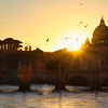 Sunset view of Rome and Vatican City with Birds