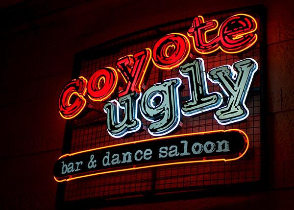 Cyote Ugly bar at NY/NY