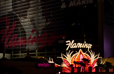 The Flamingo Casino