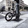 """Montréal ville du vélo, cela peut surprendre, mais c'est vrai. C'est même un moyen de transport très intéressant pour la visiter. <br /> Pour notre deuxième jour à Montréal, nous avons loué des vélos  <a href=""""http://www.caroulemontreal.com/fr/"""">http://www.caroulemontreal.com/fr/</a> qui est sur le Vieux Port. Mieux que l'équivalent montréalais des VéloPass, ils seront vous conseiller pour des parcours adaptés au temps à votre disposition et proposent donc plusieurs parcours."""