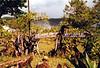 """El campamento """"Tomás"""" donde dormiamos en Canaima"""