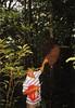 El guía enseñándonos un hormiguero