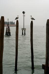 Venice '08