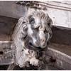 Benign lion guarding an entranceway.