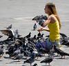 Pigeons San Marcos Square