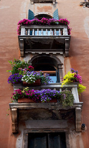 Flower Balcony in Venice