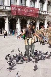 with Pigeons at St Mark's Square