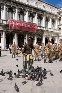 More pigeons