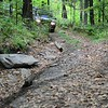 Vermont Overland Rally 2017-7775