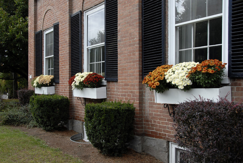 Window boxes with fall flowers in Woodstock, Vermont.