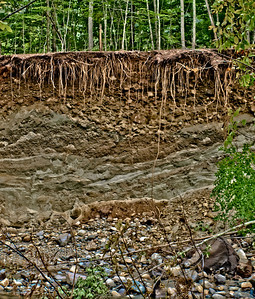 This shot shows some of the damage from Hurricane Irene.  I took this when I visited my father in southern Vermont.  You can see the roots of the trees hanging down and the layers of rock and dirt from the landslide.  The flood waters rose high enough to double the width of rivers, to make creeks into raging rivers, and to eat up the land, making roads impassable.  I hope you can see some of that devastation here in this image.    I posted more to another gallery:  http://www.rpckphotos.com/Nature/Hurricane-Irene/19066359_D97t3z#1483171951_FPxrdPt