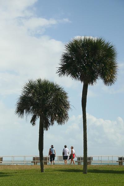 Vero Beach Trio