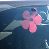 Pam even made a poppy for the car!