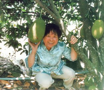 Phương ở trong dường mít cũa anh Chí Phương among the jack fruits Bình Dương Việt Nam - Jul 2002