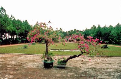 Cỏ bên sau Chùa Thiên Mụ Back lawn, Thiên Mụ pagoda Huế Việt Nam - Aug 2002