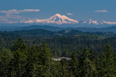 Bear Mountain Resort - Mountain Course, View of Mount Baker