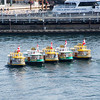 Water Taxi Ballet