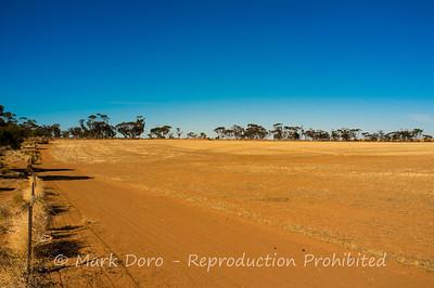Wheat fields, near Sealake, Victoria