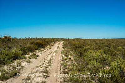 Sandy Tracks, Little Desert, Victoria