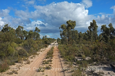 Sandy Tracks, Little Desert, Victoria