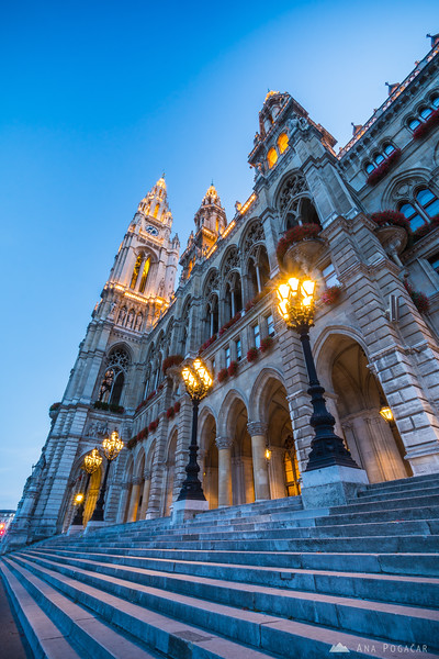 Rathaus (City Hall) during the blue hour
