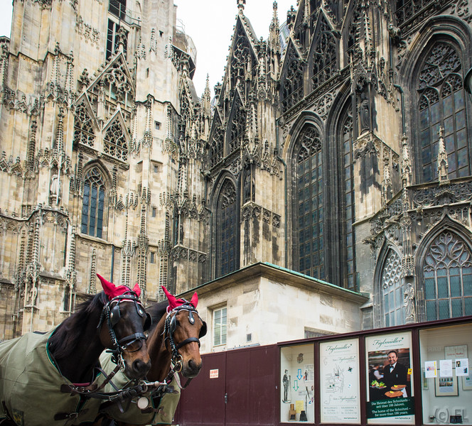 Stephansdom, Vienna's Cathedral