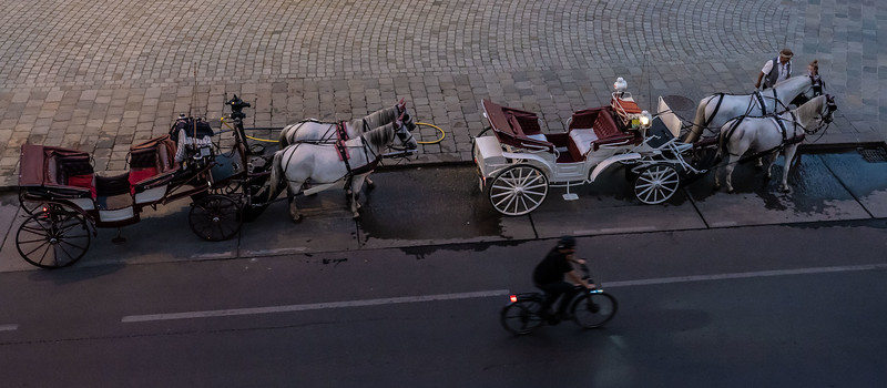 Carriages at Dusk near the Albertina