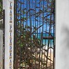 Vieques, PR 2017 gateway to the beach