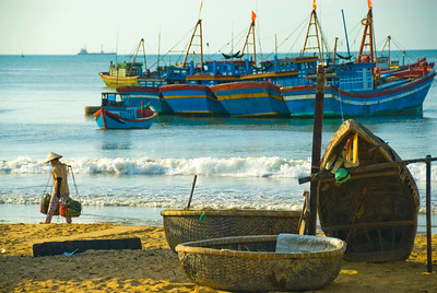 Woman carries load in a traditional way, between beached basket boats (thung chai) and the fleet offshore - Quy Nhon - Vietnam