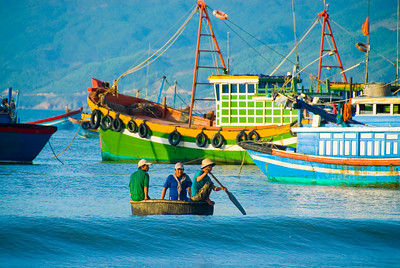Fisherman row ashore in their traditional basket boat (thung chai) - Quy Nhon - Vietnam