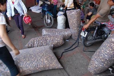 Dried mushrooms in hanoi market