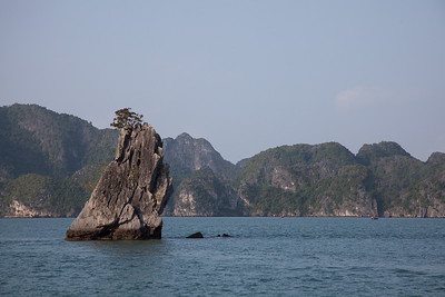 A small karst with a tree in the bay.