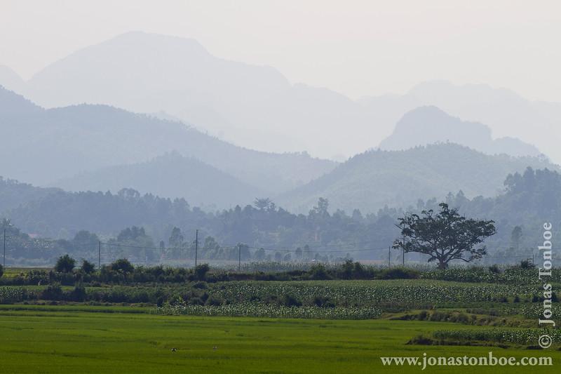 Rice Paddy and Mountains of Phong Nha-Ke Bang National Park