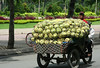 Street vendor, Saigon, Vietnam