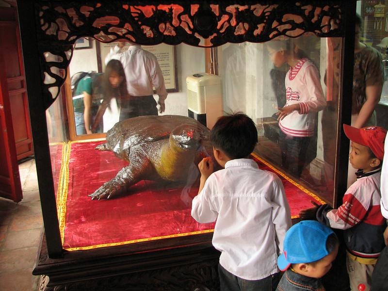 Inside Ngoc Son Temple