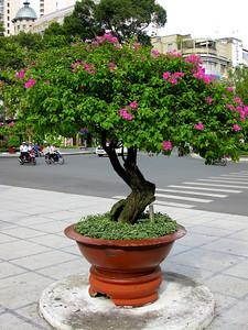 Saigon - July 2009