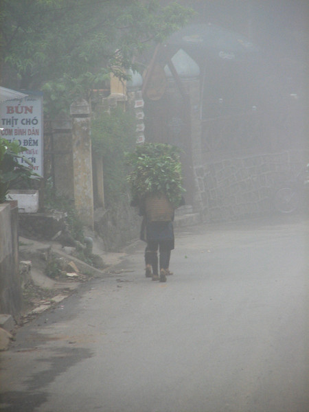Sapa is a very foggy place