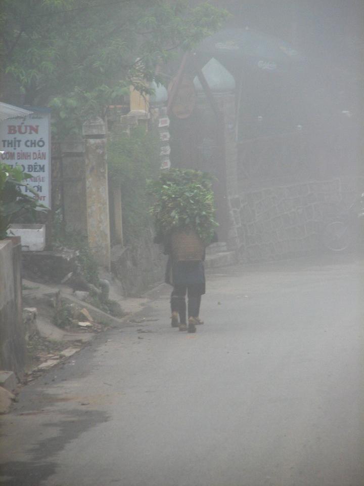 Sapa is a very foggy place