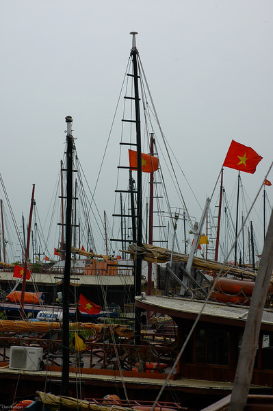 Masts in Ho long Bay<br /> N. Vietnam
