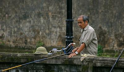 Vissen in de gracht van de oude Keizerlijke Stad. Hué, Vietnam.