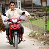 Transporting goods via motorcycle