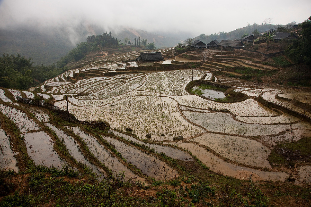 A typical mountain view of the Sapa region. Could have used some sun, though.