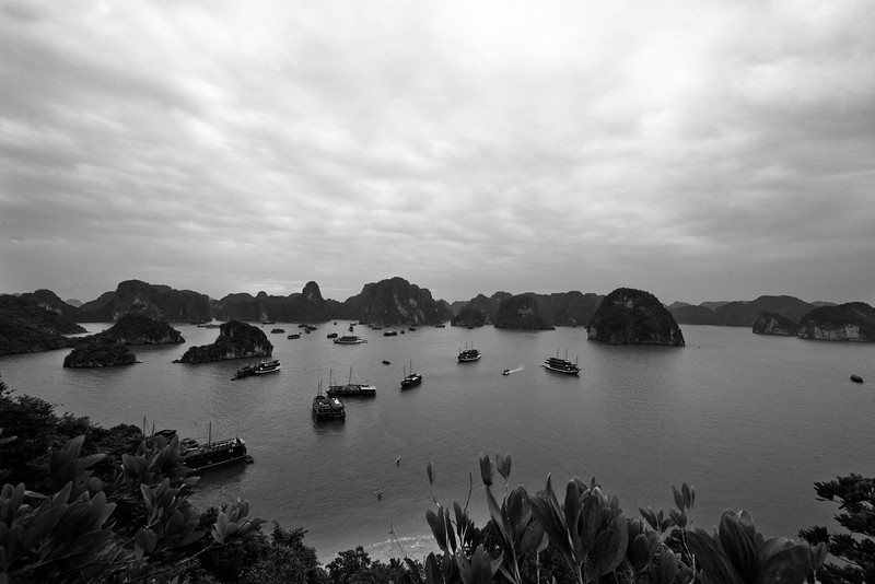 I wished for some sun. It was cold enough that I had to force myself to take a swim. Halong Bay.