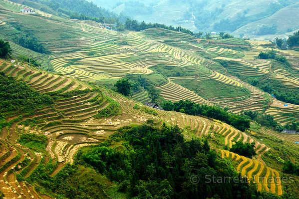 Sapa area, near the Chinese border in North Vietnam