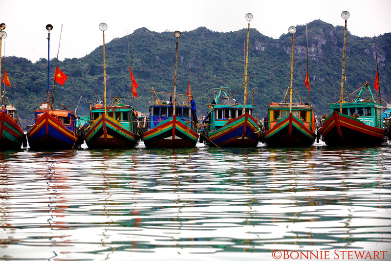 Boats in the Cat Ba Harbor