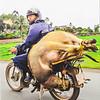 Vietnam street postcard_0005