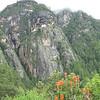 Tiger's Lair Bhutan