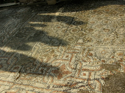 Mosaic tile floor from Ephesus terrace house